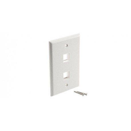 2-Port Surface Wall Plate
